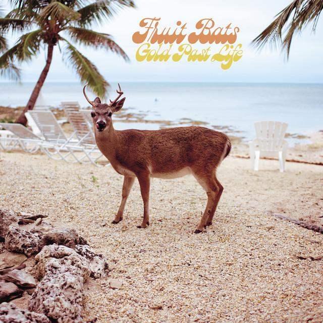 Album artwork for, Gold Past Life